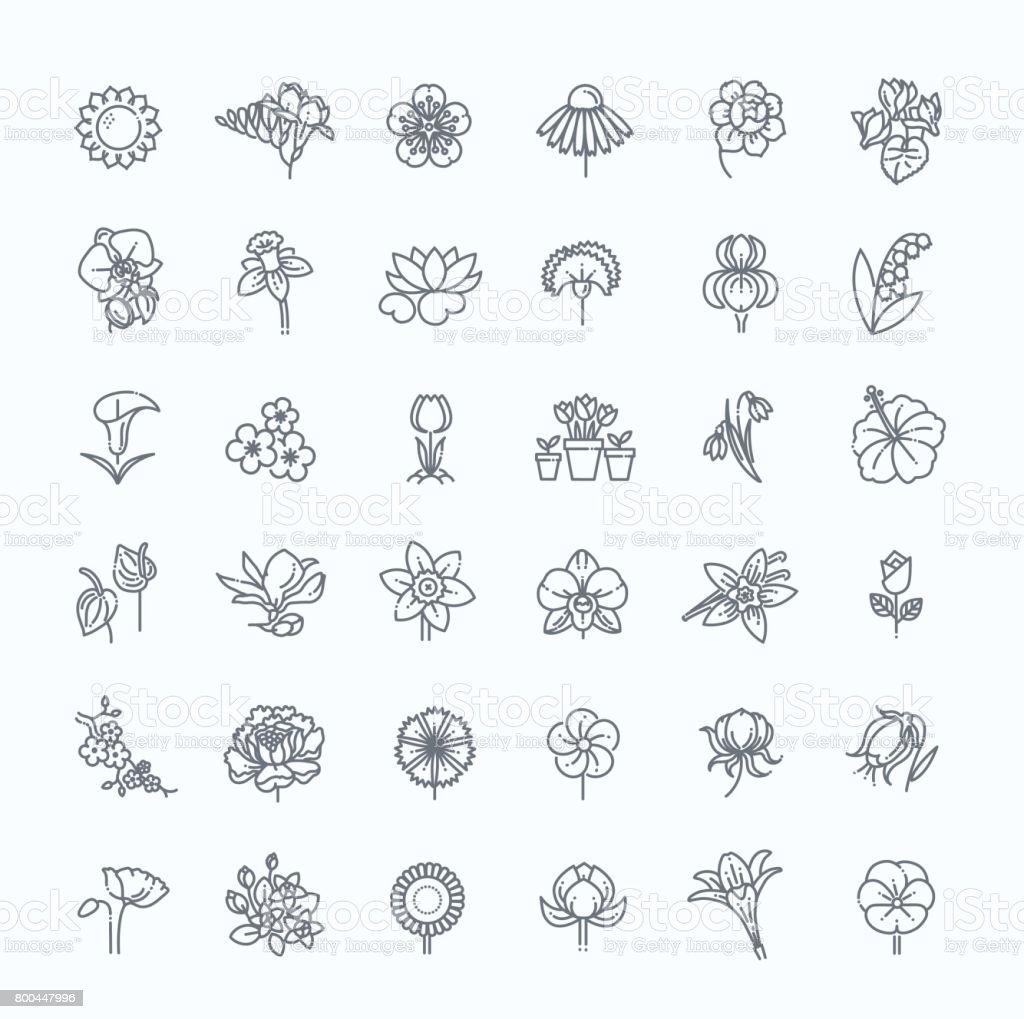 Flower Icon Set - Vector Illustration vector art illustration
