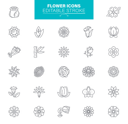 Flower Icons Editable stroke. In set icons as Medical herbs, Leaf, Plant, Rose, Bouquet