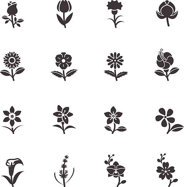 blume symbole für muster - hibiskusgarten stock-grafiken, -clipart, -cartoons und -symbole