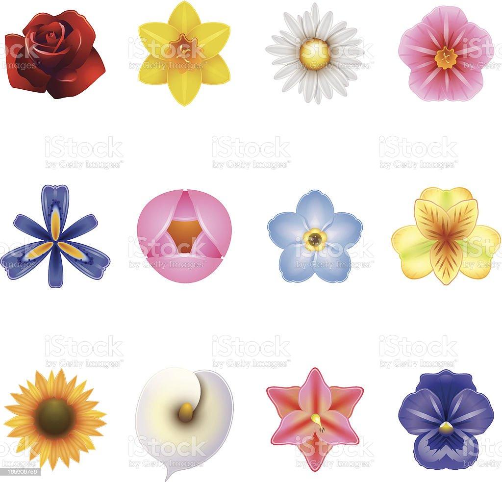 Iconos de flores - ilustración de arte vectorial