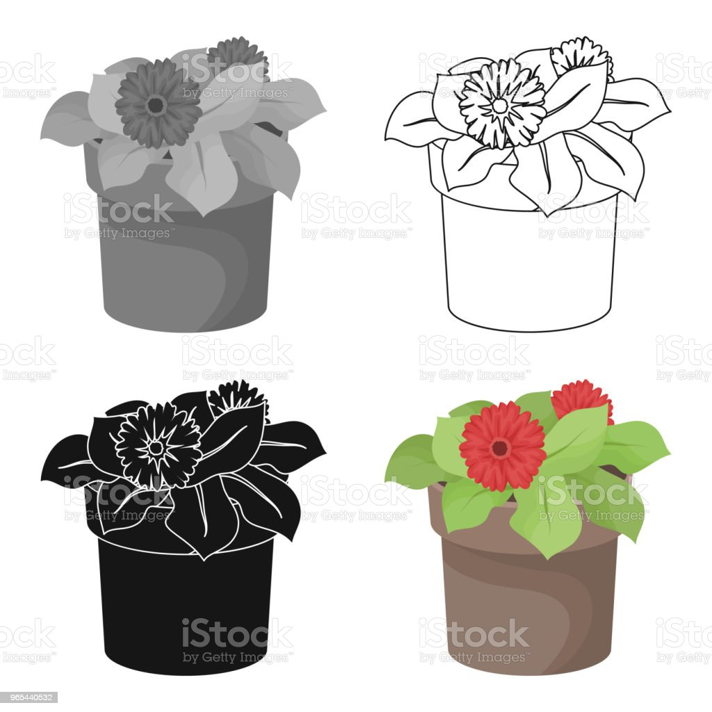 Flower in the pot icon in outline style isolated on white background. Bio and ecology symbol stock web vector illustration. royalty-free flower in the pot icon in outline style isolated on white background bio and ecology symbol stock web vector illustration stock vector art & more images of abstract