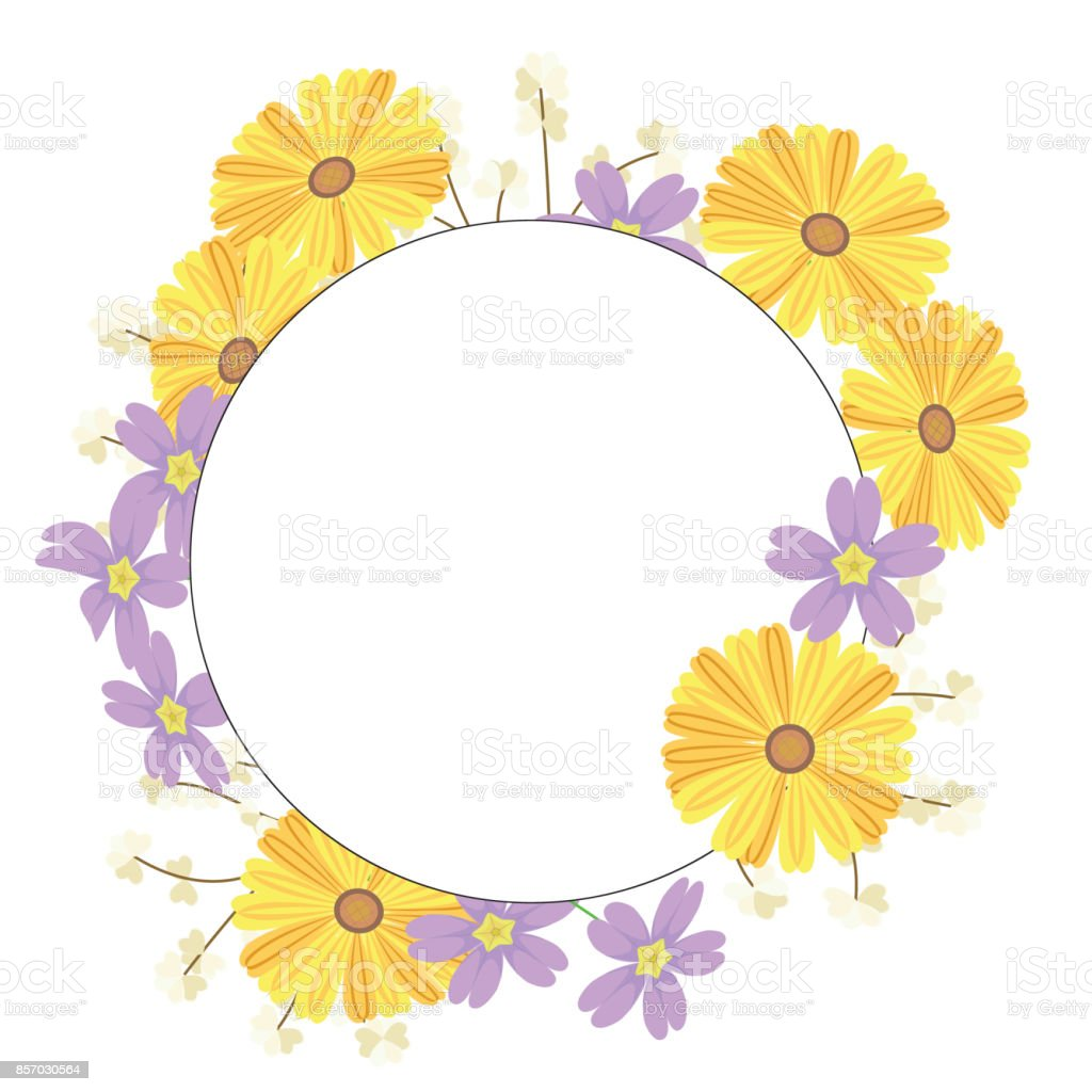Flower Is In The Spring Circle Of Flower Withe Yellow Chrysanthemum