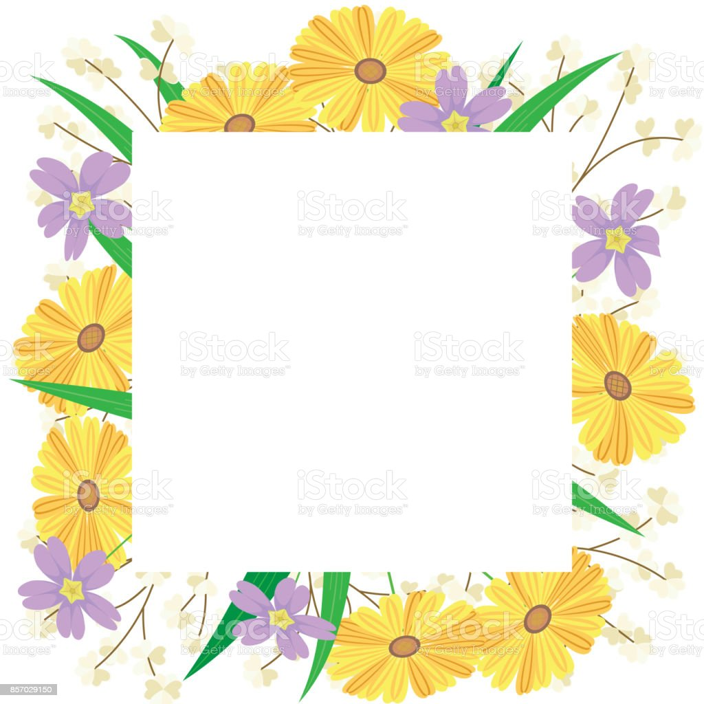 Flower Is In The Spring Frame Of Flower Withe Yellow Chrysanthemum