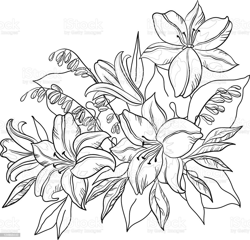 Flower Lily Contours Stock Vector Art More Images Of Application