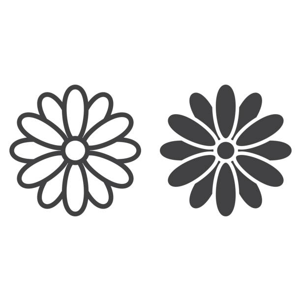 Flower line and glyph icon, easter and holiday, nature sign vector graphics, a linear pattern on a white background, eps 10. Flower line and glyph icon, easter and holiday, nature sign vector graphics, a linear pattern on a white background, eps 10. flower head stock illustrations