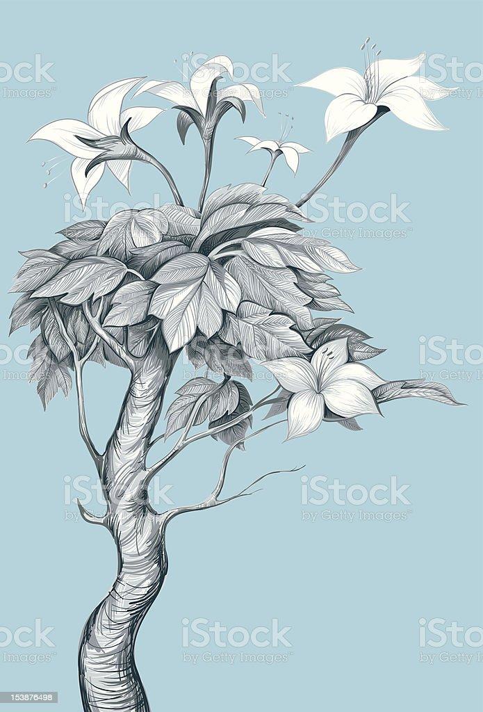 Flower line art. Fictional plant. vector art illustration