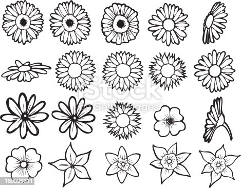 Simple line art of various flower petals.