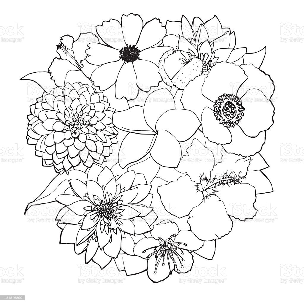 Flower Bouquet Line Drawing : Flower line art stock vector more images of