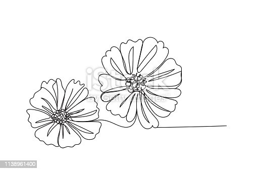 Flower , line drawing style,vector design