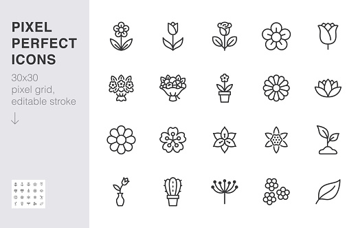 Flower line icon set. Rose, tulip in vase, fruit bouquet, spring blossom, cactus minimal vector illustration Simple outline signs for flowers delivery application. 30x30 Pixel Perfect. Editable Stroke clipart