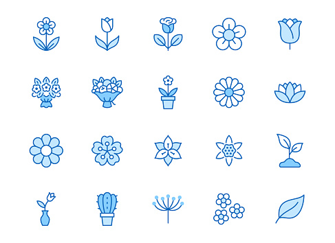 Flower line icon set. Rose, tulip in vase, fruit bouquet, spring blossom, cactus minimal vector illustration Simple blue outline signs for flowers delivery application. Editable Strokes