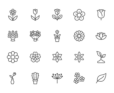 Flower line icon set. Rose, tulip in vase, fruit bouquet, spring blossom, cactus minimal vector illustration Simple outline signs for flowers delivery application. Pixel Perfect Editable Stroke