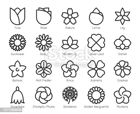 Flower Line Icons Vector EPS File.