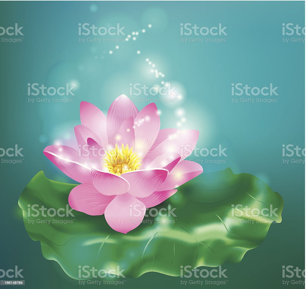 Flower lotus. Floral background. royalty-free stock vector art