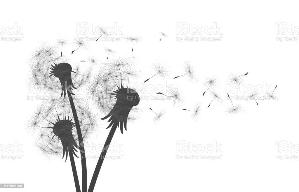 Fleurs De Champ Pissenlit Cliparts Vectoriels Et Plus D Images De
