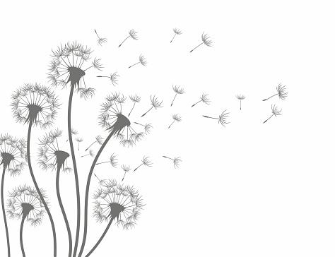 Flower Art Drawing Doodles