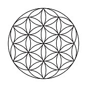istock Flower of Life Sacred Geometry Icon on Transparent Background 1284282041