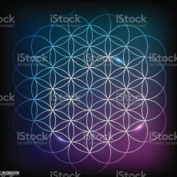 Bloem Van Het Leven Heilige Geometrie Stockvectorkunst en meer beelden van Abstract