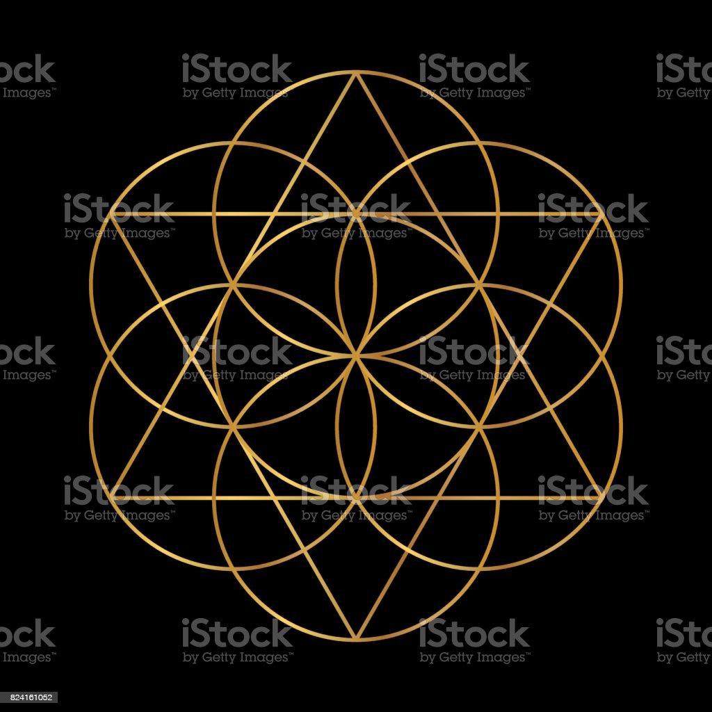Flower of Life, Sacred Geometry vector art illustration