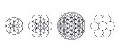 Flower of Life, Seed and Egg of Life. Geometric figures, spiritual symbols and sacred geometry. Circles forming symmetrical flower-like patterns. Illustration over white. Vector.