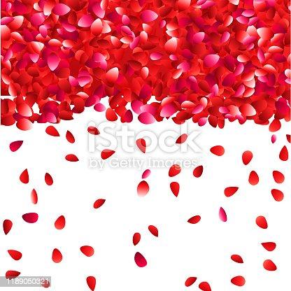 dense rose petals falling background