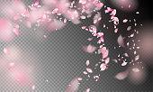 風の中の花の花びら