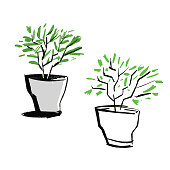 Vector illustration of a couple of flower plots with a pencil and inking style.