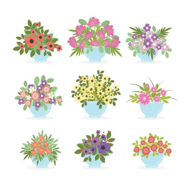 Flower pots set on white background. Flower pots set on white background. Colorful summer bouquets. potted plant stock illustrations