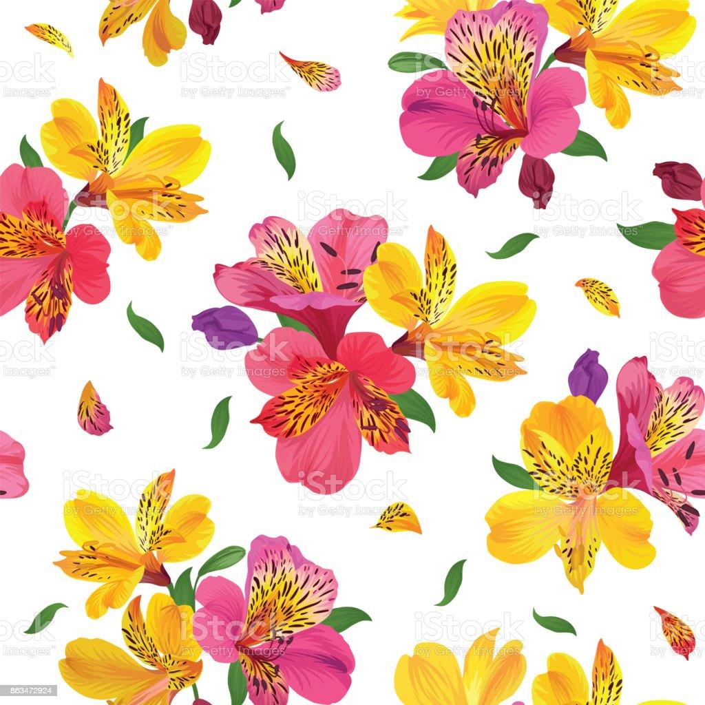 Patrón sin fisuras de flor con flores de lirio hermoso de alstroemeria en plantilla de fondo blanco. - ilustración de arte vectorial