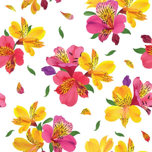 nahtlose blumenmuster mit schönen alstroemeria lilie blumen auf weißem hintergrundvorlage. - inkalilie stock-grafiken, -clipart, -cartoons und -symbole