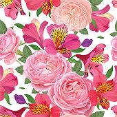 Flower seamless pattern with beautiful pink alstroemeria lily flowers and roses on white background template. Vector set of blooming floral for wedding invitations and greeting card design.
