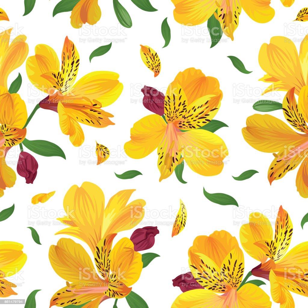 Patrón sin fisuras de flor con flores de lirio hermoso alstroemeria amarillo en la plantilla de fondo blanco. - ilustración de arte vectorial