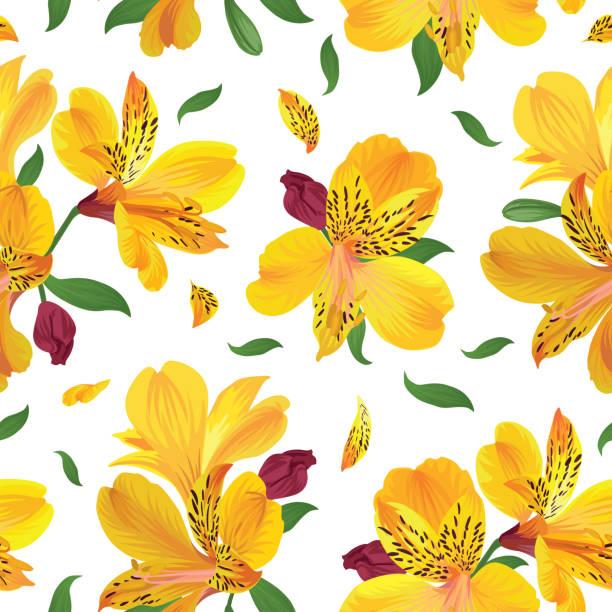 nahtlose blumenmuster mit schönen gelben alstroemeria lilie blumen auf weißem hintergrundvorlage. - inkalilie stock-grafiken, -clipart, -cartoons und -symbole