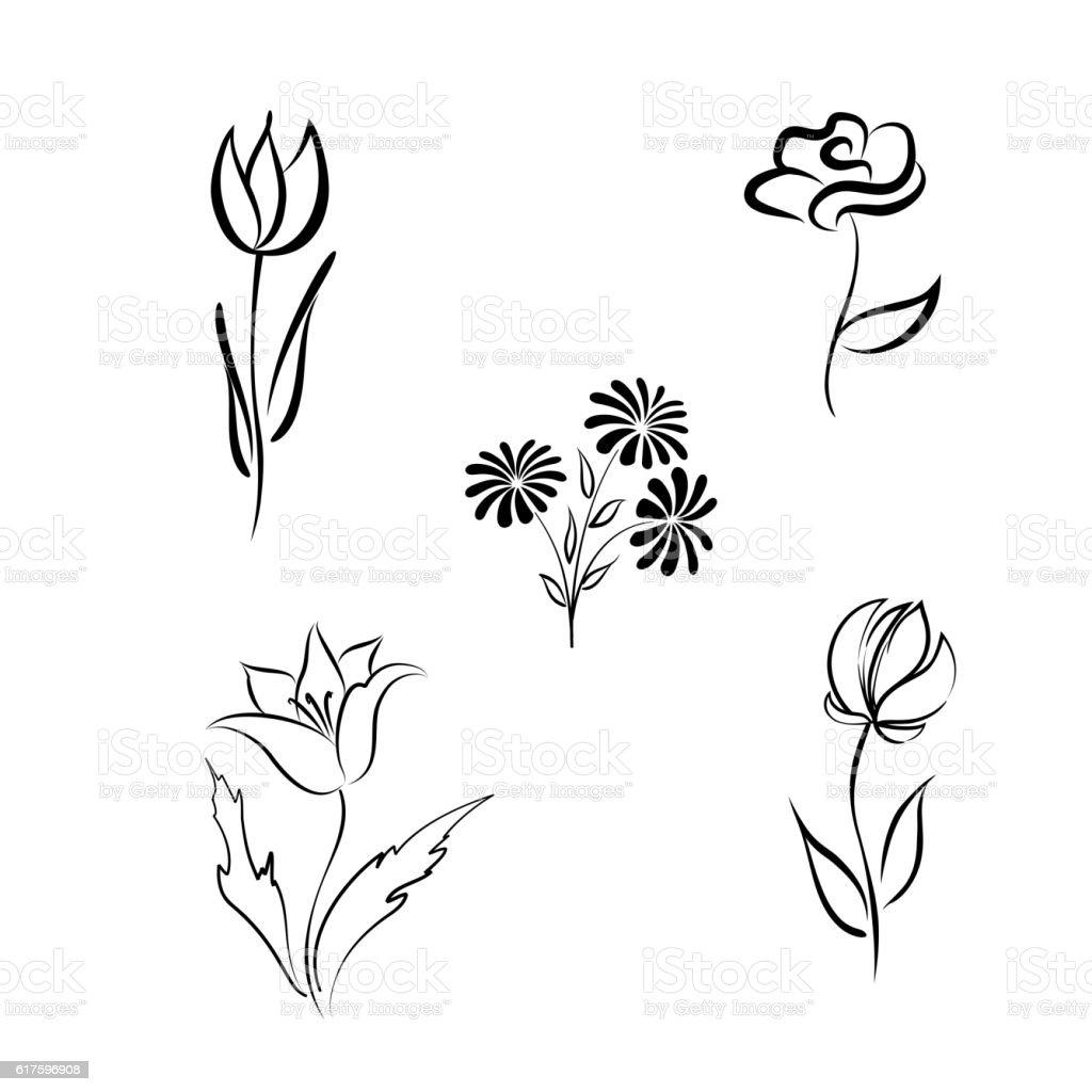 Flower set. Single line hand drawn floral design elements