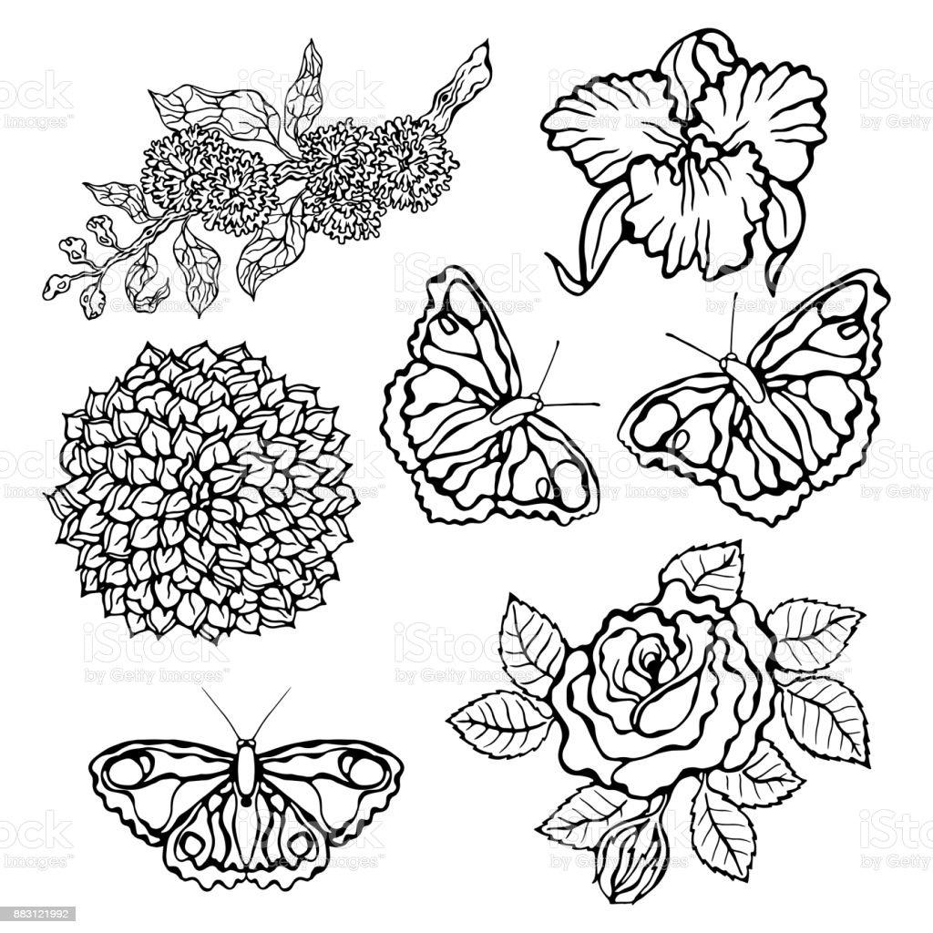 Vetores De Conjunto De Flor Ilustracao Em Vetor Flores Isoladas No