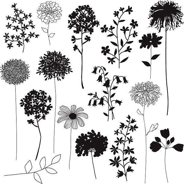 flower silhouettes - wildflowers stock illustrations, clip art, cartoons, & icons