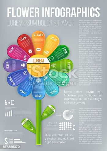 Flower style infographic colored chart, options or menu, vector page template for workflow layouts, presentation and web design
