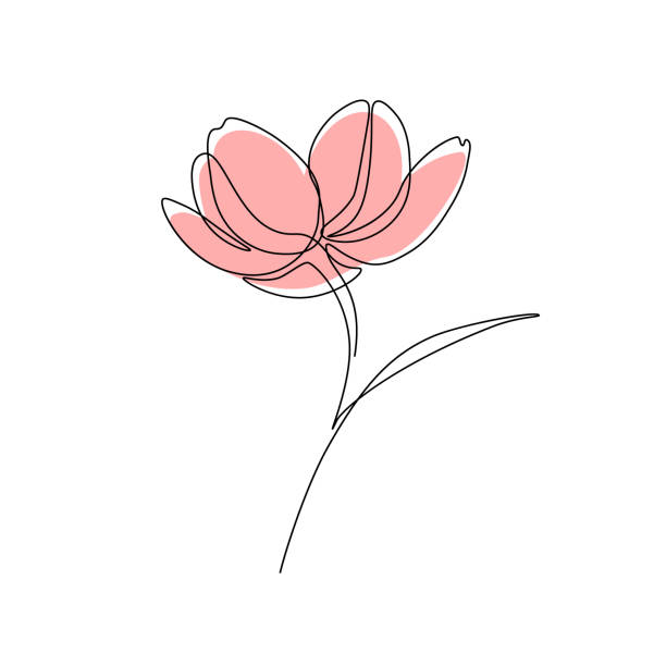 Flower Abstract flower in one line art drawing style. Vector illustration flower part stock illustrations