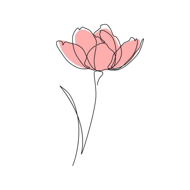 flower - jeden przedmiot stock illustrations
