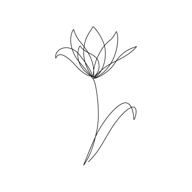 bildbanksillustrationer, clip art samt tecknat material och ikoner med blomma - tulpaner