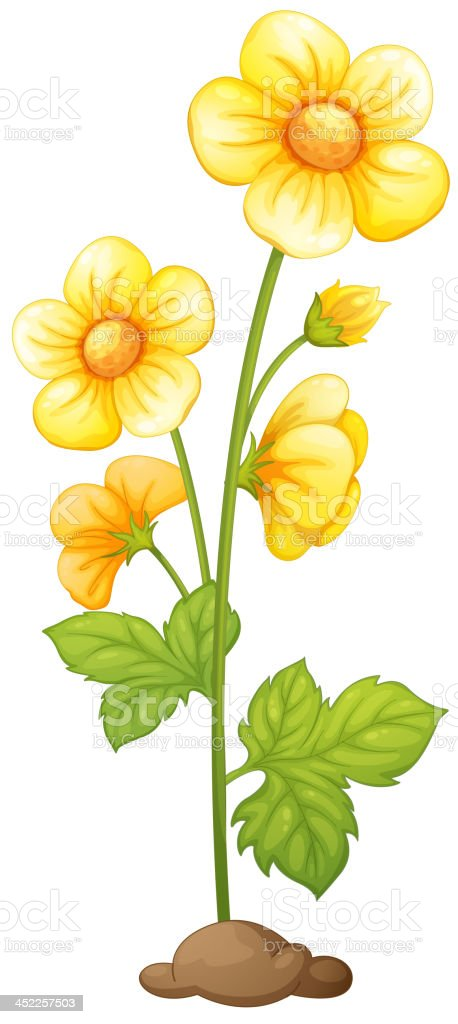 Flower royalty-free stock vector art