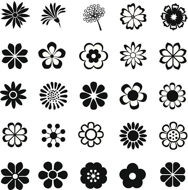 Vector Line Drawing Flower Pattern : Royalty free flower clip art vector images