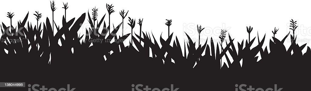 Flowerbed royalty-free stock vector art