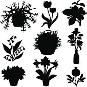 Vector flowering plant silhouettes: Christmas cactus, dogwood, lily of the valley, basket of flowers with ferns, roses, poinsettia, amarillis and pomegranate.