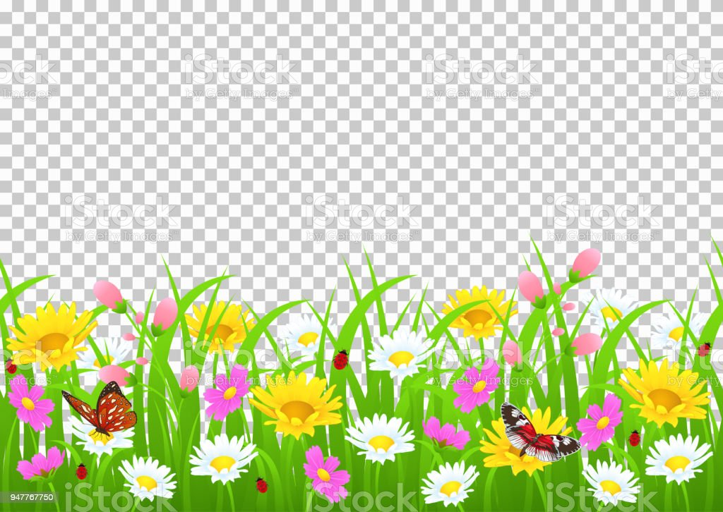 Flowers and grass border yellow and white chamomile and delicate flowers and grass border yellow and white chamomile and delicate pink meadow flowers and green mightylinksfo