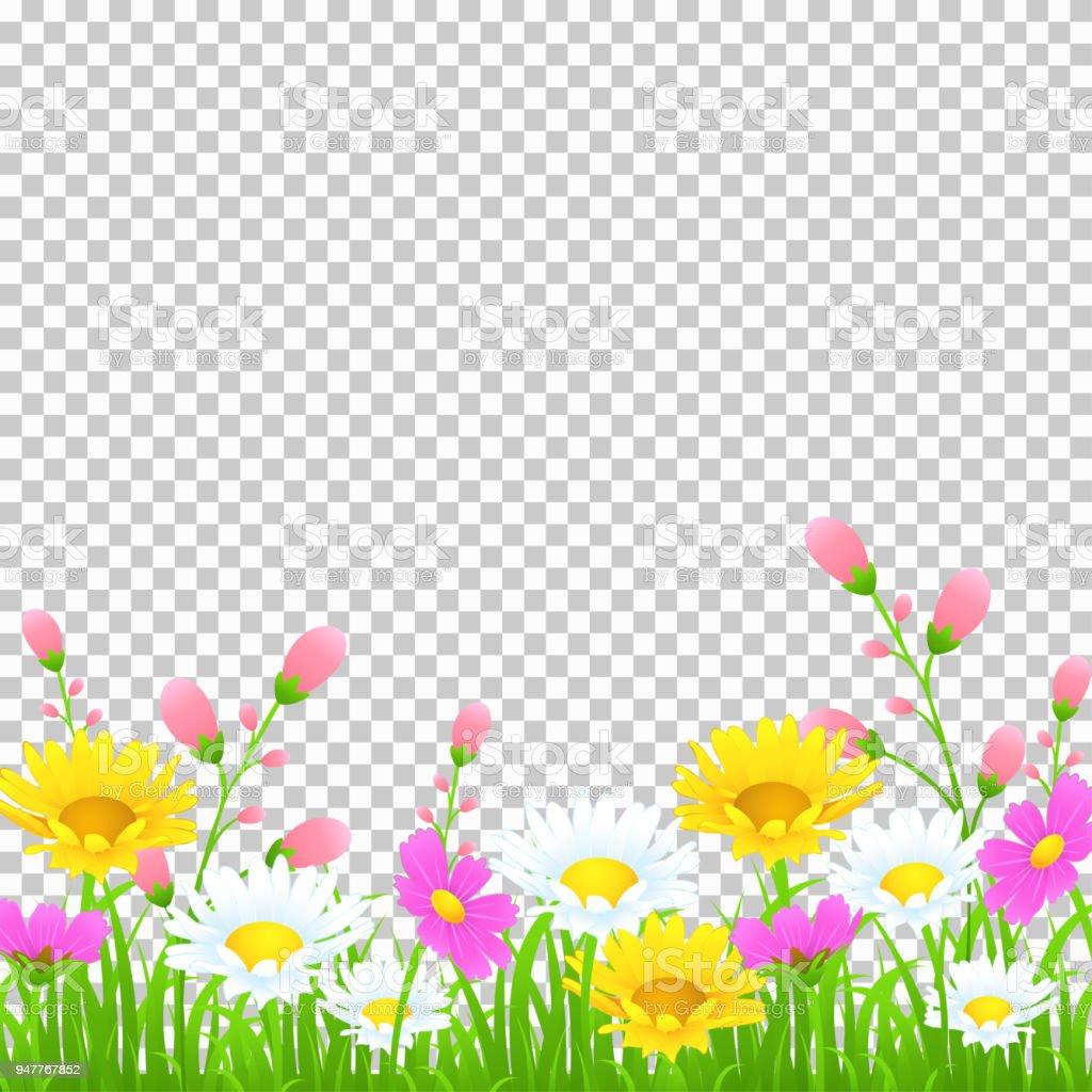 花と草の境界線黄色と白のカモミールと繊細なピンクの草原の花と透明な