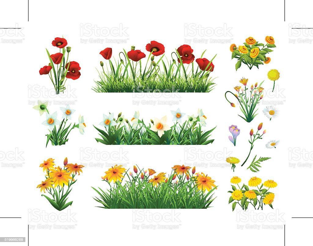 Flowers and grass vektorkonstillustration