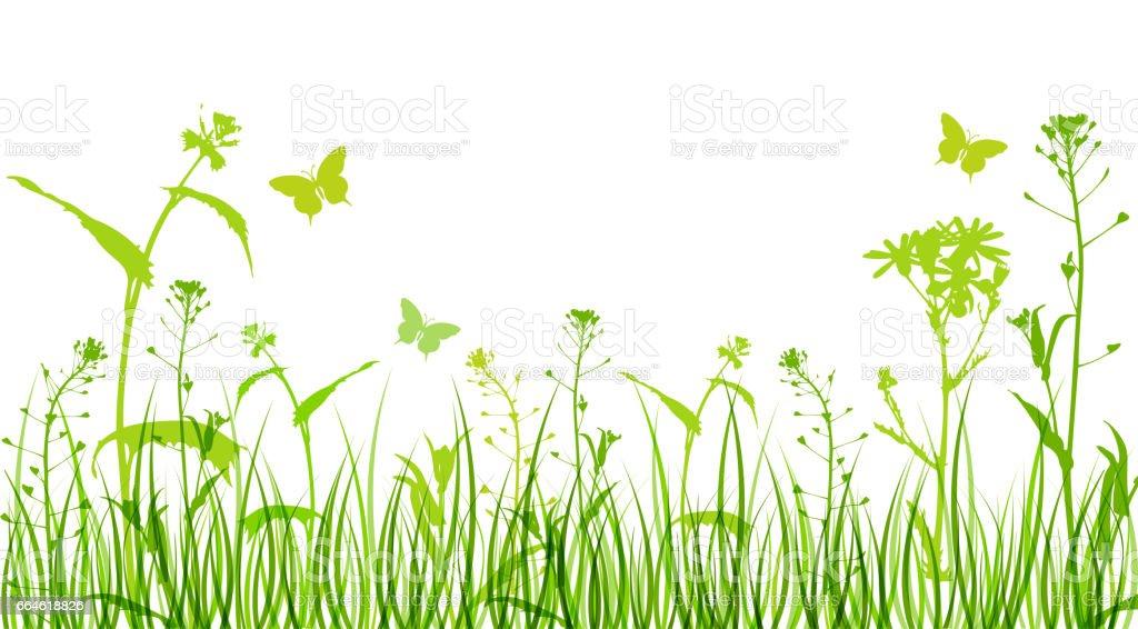 Flowers and green grass – Vektorgrafik