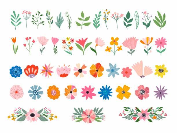白で隔離された花と植物のコレクション - 花点のイラスト素材/クリップアート素材/マンガ素材/アイコン素材