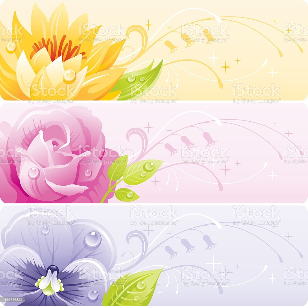 Flowers banner set royalty-free flowers banner set stock vector art & more images of angle
